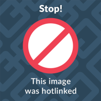 Washing Machine Cycles 101- What's the Deal with Dial